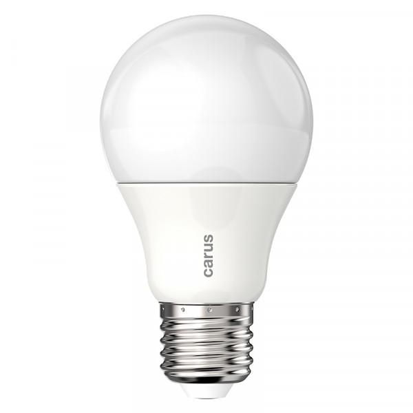CARUS LED-Lampe Classic Dim 600 E27 8,6W (48 W) 600 lm warmweiß ...