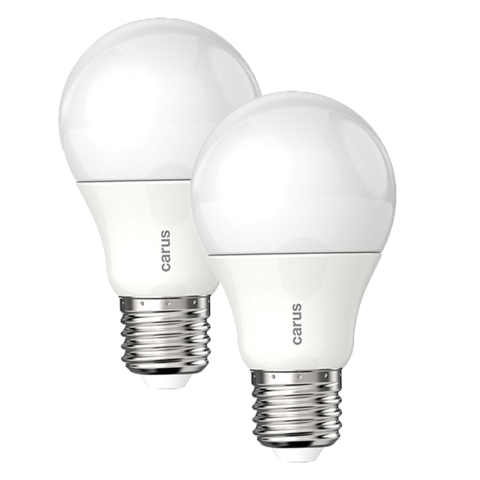 Led Tageslicht Leuchtmittel : carus tageslicht led lampe matt e27 8 6w 48w 600 lm 4500k dimmable germany 2er ebay ~ Watch28wear.com Haus und Dekorationen